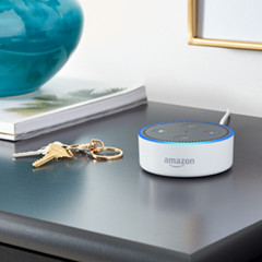 Alexa Skills for Internet of Things (IoT)